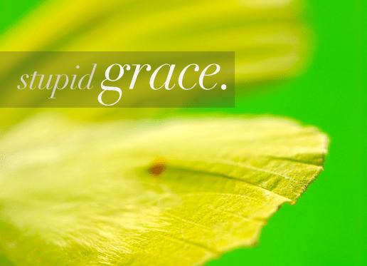 Stupid Grace