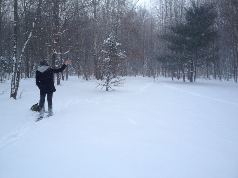 My brother playing snow disc golf.