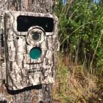 Moultrie D555i Trail Camera