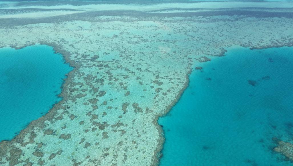 grande-barreira-de-corais-australiana