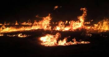terreno fogo