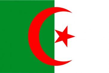 Empresas argelinas buscan oportunidades en Almería