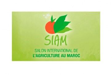 La feria agrícola de Marruecos acoge a 11 empresas andaluzas