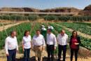 La agricultura como ventana a la reinserción social de jóvenes infractores