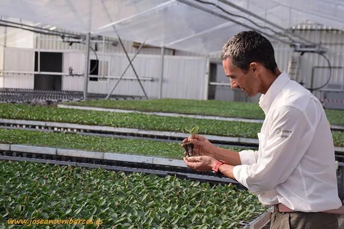 Grupo Cristalplant. Semillero de ecológico de El Ejido, Almería.