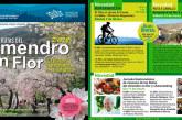 Las rutas del almendro en flor hasta marzo