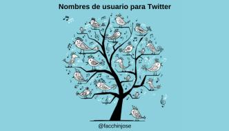 ¿Cómo elegir un nombre de usuario para Twitter que destaque tu cuenta?