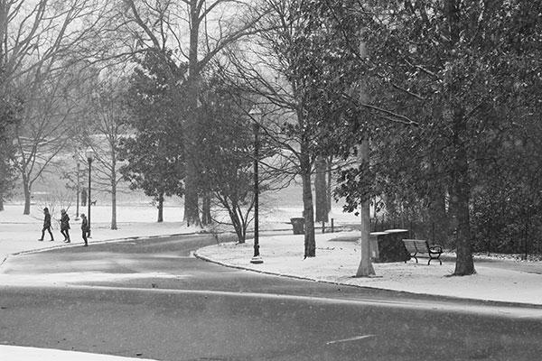 Atlanta-snow-2014-piedmont-park