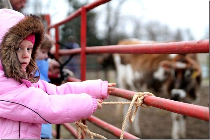 Bunn Farm 4
