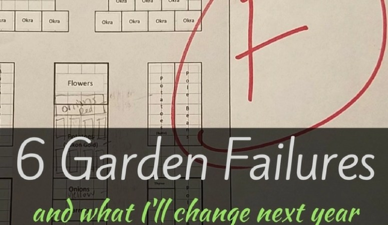 6 Garden Failures and What I'll Change Next Year