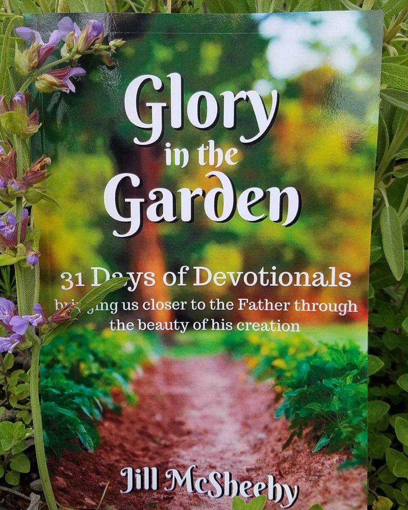 Glory in the Garden: 31 Days of Devotionals by Jill McSheehy