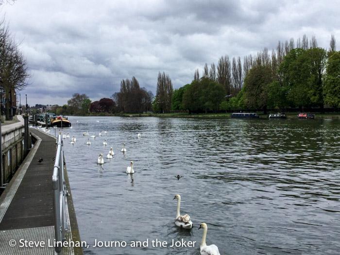 The Thames River at Kingston
