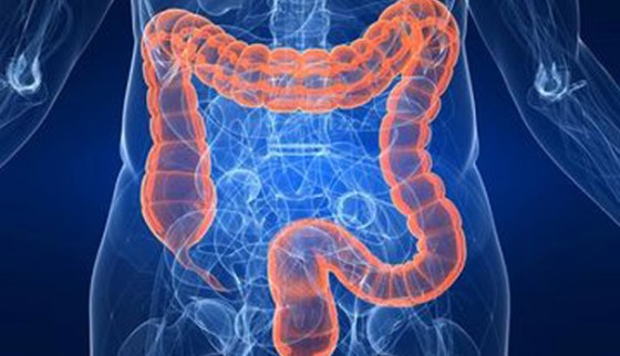 healthy digestion jovanka