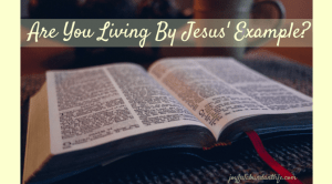 Christian, Are You Living By Jesus' Example?