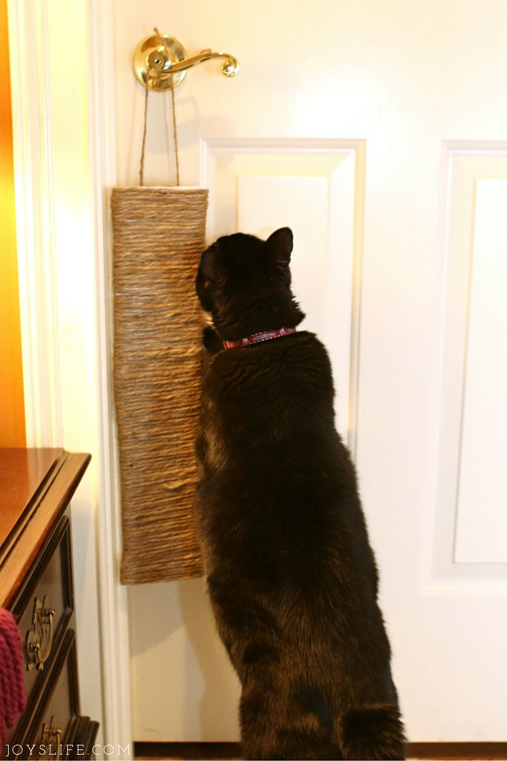 Make a DIY Cat Scratcher & New Cat Care Kit #yougottabekittenme #CollectiveBias