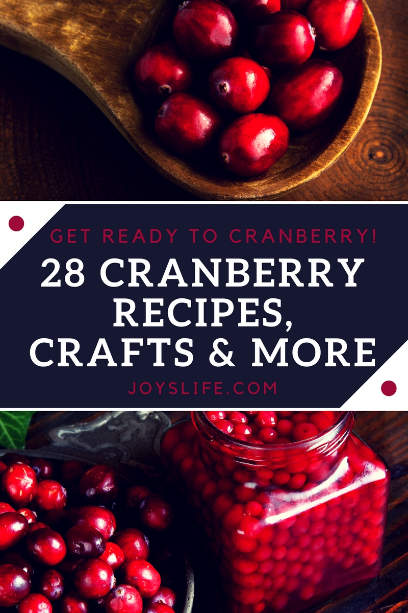 28 Cranberry Recipes Crafts and More