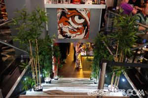 easy-tiger--11