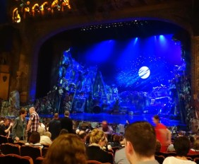 Cats The Musical CatsMusical (2)