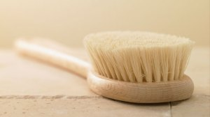 dryskinbrush