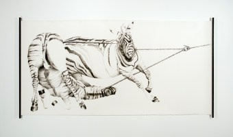 "Untitled (zebras) | 2006 | charcoal on paper | 45"" x 93"""