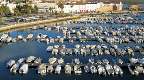 Multiple boats in the marina at Faro, as seen from the roof of Hotel Eva.