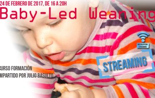 dest-baby-led-weaning-strea