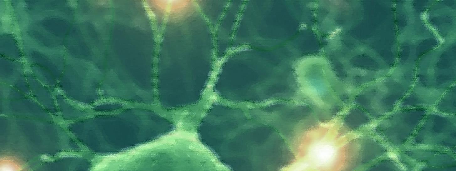 neurons4