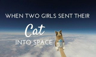 When Two Girls Sent their Cat Into Space