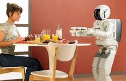 robot domestic