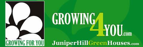 growing4you