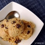 First Post of 2010: Oatmeal Chocolate Chip Ice Cream