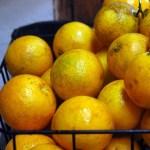 Candied Orange Spice Peels