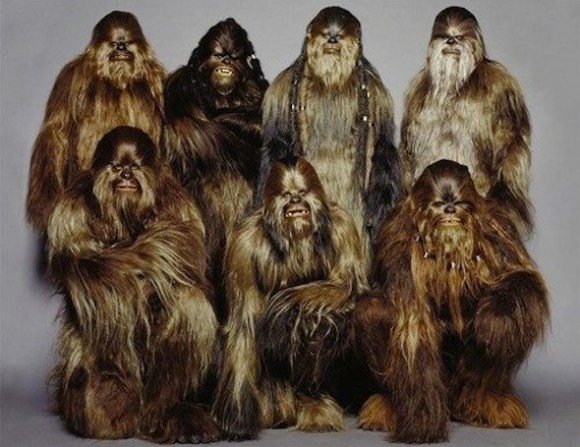 Wookie Party