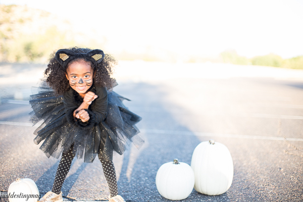 Easy Childs Cat Costumes  - Just Destiny_-37