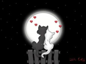 Full Moon Love Spell