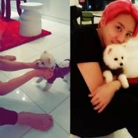[INSTAGRAM] 160214 Kim Junsu Instagram Update: Puppy Lover