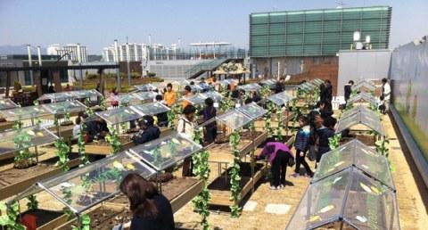 les jardins sur les toits