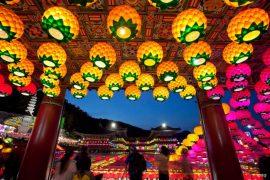 le festival des lanternes de lotus