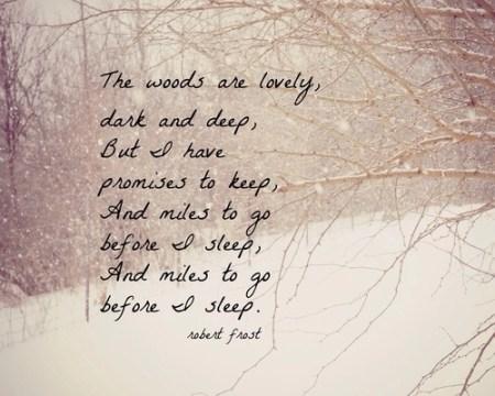 47661-Miles-To-Go-Before-I-Sleep-