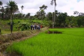 AGRICULTURE ET SECURITE ALIMENTAIRE : Priorités de l'Homme, le cas guinéen (Dr M. Camara, Nebraska)