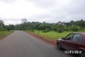 Insécurité à Pita: Trois présumés bandits et leurs complices arrêtés à Bomboli