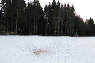 wolfach16 (80)