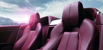 Roadster-interior-2