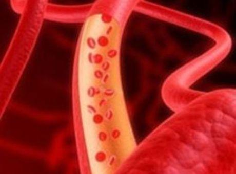Что нормализует кровообращение?
