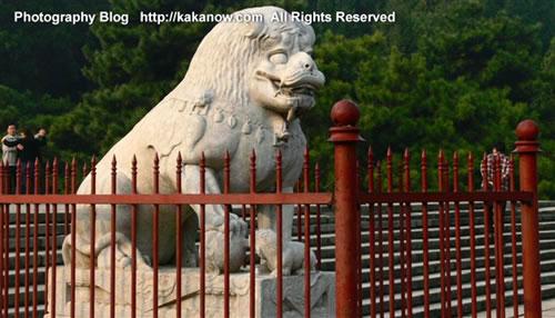 A stone lion in Yiheyuan(the summer palace), Beijing, China. Photo by kaka.