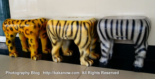 Animal bench in China Beijing Zoo. Photo by KaKa.