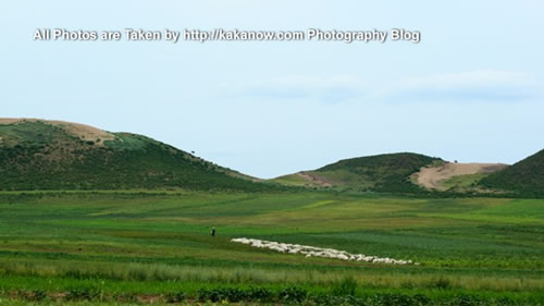 China travel, Inner Mongolia, Horqin Prairie. Photo by KaKa.