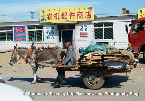 China travel, Inner Mongolia, Horqin Prairie, a small town, donkey cart. Photo by KaKa.
