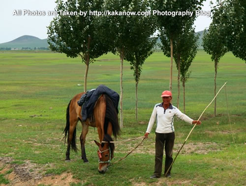 China travel, Inner Mongolia, Horqin prairie, herdsman. Photo by KaKa.