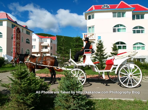 China travel, Inner Mongolia, Hing'an, Aer Mountain. A carriage in Aer town. Photo by KaKa.